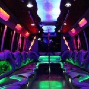 amsterdam party bus transfer